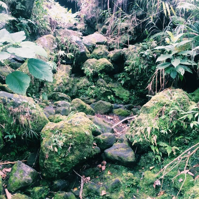 Mount-Mayon-(16)