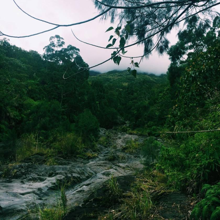 Mount-Mayon-(18)
